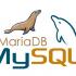 Reset the MariaDB Root Password